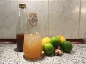 Citrus- og ingefærsaftevand